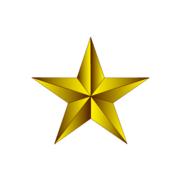 Lone Star Bank Logo